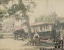 品川界隈-明治・大正・昭和の写真、  絵葉書一覧